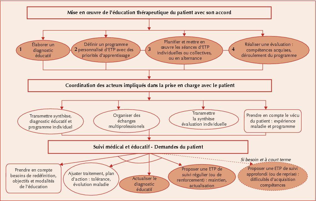 éducation thérapeutique du patient has