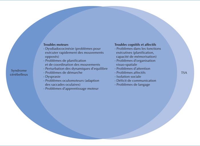 stéréotypies verbales psychologie